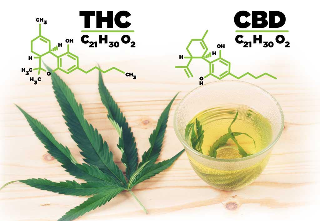 difference-thc-vs-cbd-hemp-1024